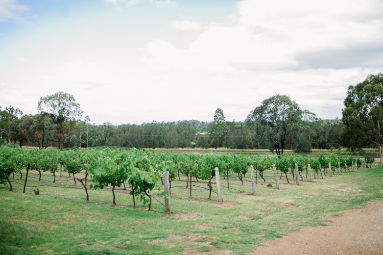 emmalie-zachary-peppers-creek-barrel-room-huntervalley-wedding031