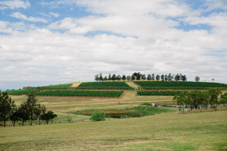 emmalie-zachary-peppers-creek-barrel-room-huntervalley-wedding001